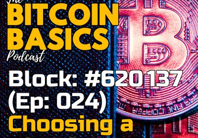 Bitcoin Wallets: #4 Choosing a Bitcoin wallet (24)