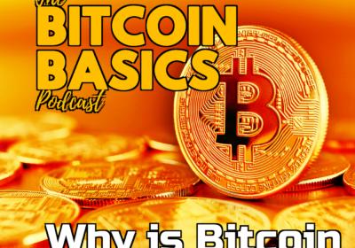 #17 Why is Bitcoin called Bitcoin? | Bitcoin Basics (50)