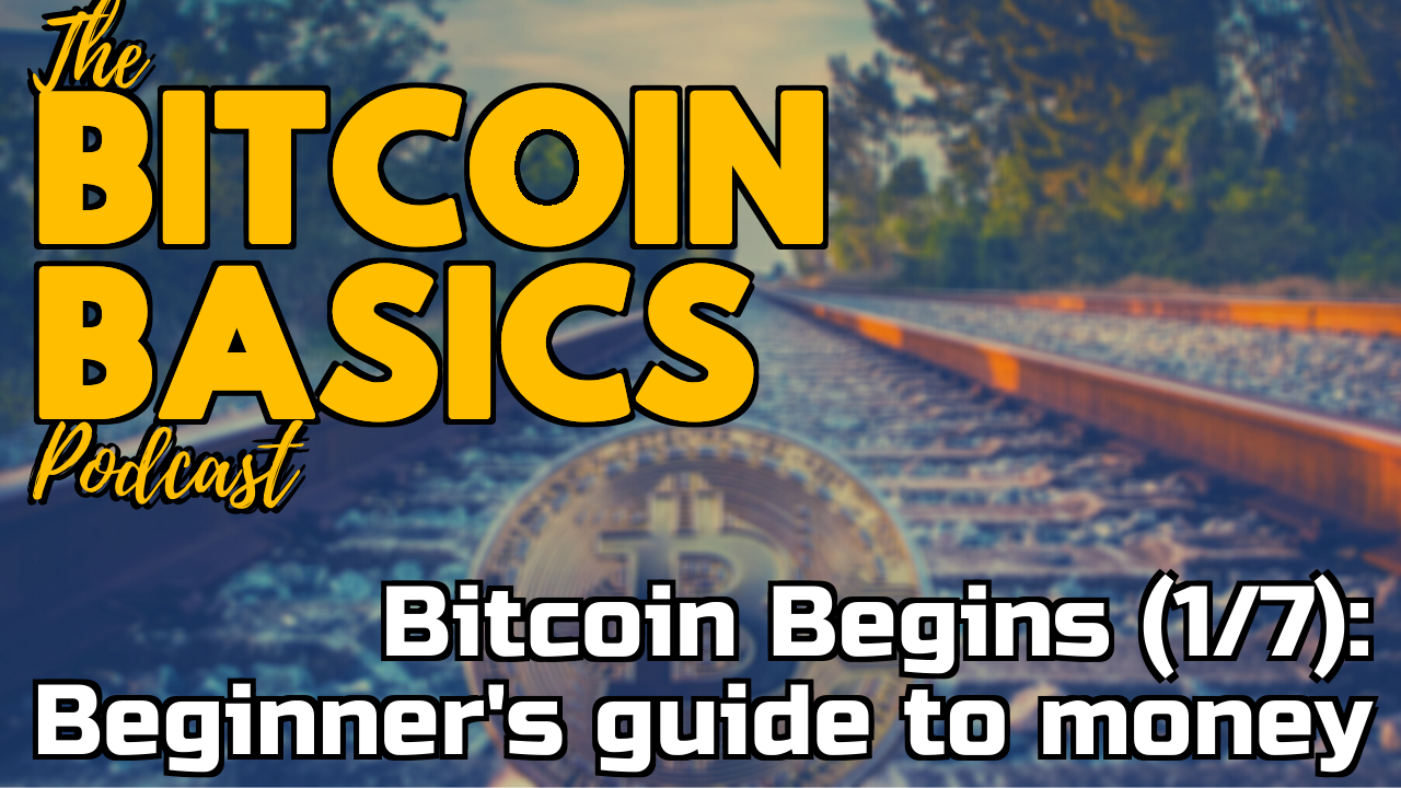 Bitcoin Begins (1/7): Beginner's guide to money | Bitcoin Basics (87)