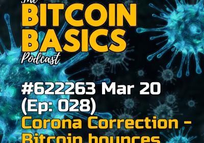 Bitcoin's Corona Correction: Bitcoin bounces (28)