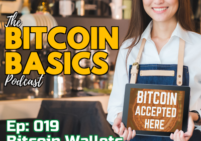 Bitcoin Wallets #2 What are custodial wallets? (20)