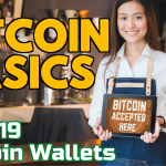 Bitcoin Basics Podcast (019): Bitcoin Wallets #1 What is a Bitcoin wallet - Youtube coverart