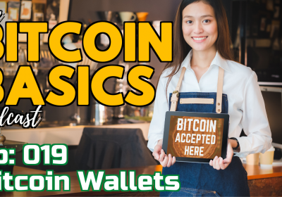Bitcoin Wallets #1 What is a Bitcoin wallet? (19)