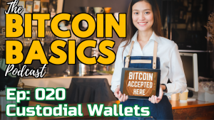 Bitcoin Basics Podcast (020): Bitcoin Wallets #2 What are custodial wallets? Youtube coverart
