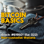 Bitcoin Basics Podcast (022): Bitcoin Wallets #3 What are non-custodial wallets? Apple Podcasts coverart