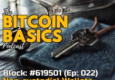 Bitcoin Wallets #3 What are non-custodial wallets? (22)