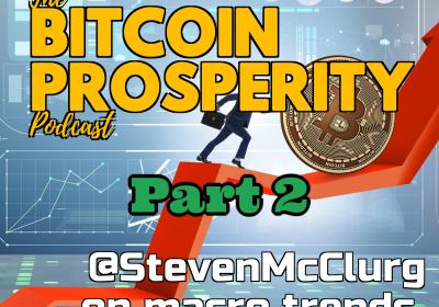 Bitcoin Prosperity: Steven McClurg, Macro Trends #2 (5)