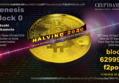 Embedded Bitcoin halving message